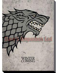 40cm x 50cm x 38cm - Stark Sigil Ned Print